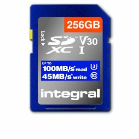 INSDX256G1V30_P10